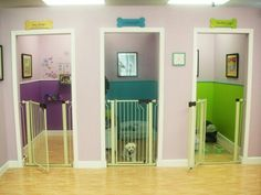 Hotel for human is pretty normal for a business runner. What about pet hotel? Pet hotel is where pet owners will go to when they plan to go out of town while there is no reliable relative or neighbor to take care of the pet. People who have dogs or … Animal Room, Pet Hotel, Grooming Salon, Dog Rooms, Rooms For Dogs, Dog Daycare, Dog Houses, Dog Bed, My Dream Home