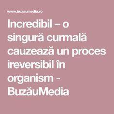 Incredibil – o singură curmală cauzează un proces ireversibil în organism - BuzăuMedia Health, Pandora, Cholesterol, The Body, Health Care, Salud