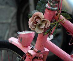 pink bicycles...pink roses...rosie blog :)