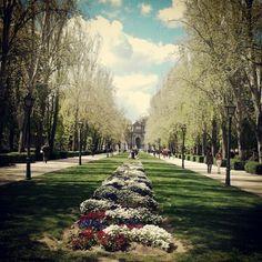 Parque del Retiro . Madrid