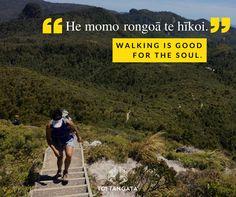 He momo rongoā te hīkoi. Walking is good for the soul. Hiking, Good Things, Mountains, My Love, Maori, Walks, Trekking, Hill Walking, Bergen
