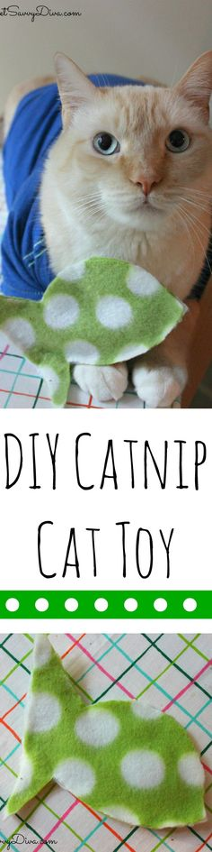 DIY Catnip Cat Toy - Cost only $.40 ! Took only 10 minutes to make.