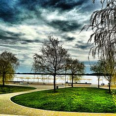#clouds and #trees by the #lake #ontario #toronto - @amirismail- #webstagram