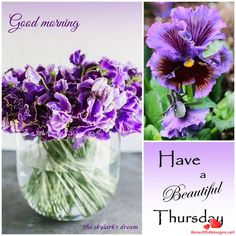 A smile to warm your day😉 Thursday Morning Quotes, Happy Thursday Quotes, Good Morning Thursday, Happy Saturday, Good Morning Quotes, Happy Friday, Nice Good Morning Images, Good Night I Love You, Good Morning Good Night