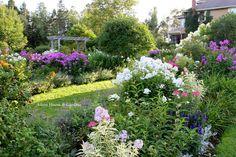 Aiken House & Gardens: Last Garden Tour of August