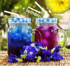 Dried blue butterfly pea flower tea. It changes color when you add lemon to it.