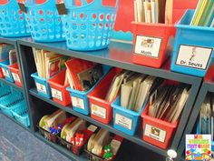 Classroom Library Labels--Clean and Simple