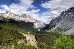 Where the Wild Things Are. Icefields Parkway drive, connecting Banff and Jasper National Parks.