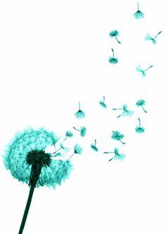 dandelion in the wind.......