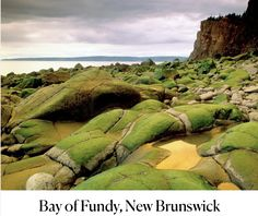 A stunning coastline and gorgeous cliffs make the Bay of Fundy one of the world's great natural sites, and its spectacular tides—the world's highest, it's said—add an element of painterly beauty. Quotes John Green, Most Beautiful, Beautiful Places, Amazing Places, Photography Lighting Setup, New Brunswick, Beauty Hacks Video, Free Travel, Beauty Room