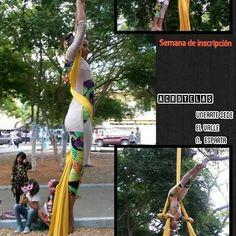 -  Semana de Inscripción aprovecha! Info:04268869743  #danzaerea #aerialsilks #acrotelas #balletaereo #telasacrobaticas #danzaaereavenezuela #Margarita #Venezuela #arco #lentpolestudio #usaerial #cirqusartcirque #circos #Regrann