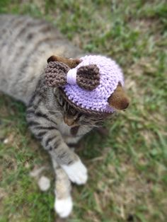 Custom Cat and Dog Hat - Cats and Small Dogs - The Chocolate and Lilac Cat's Hat - Cat Clothing Cat Clothes on Etsy, $20.00