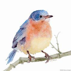 Watercolor bird by Sharon Morgio