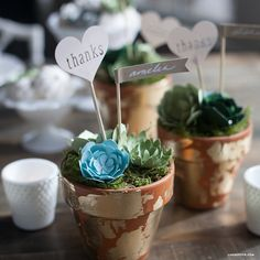 These paper succulent DIY wedding favors are perfectly on trend and have the added bonus of lasting a lifetime, so your guests can take home the perfect memento of your special day! I used a variety o