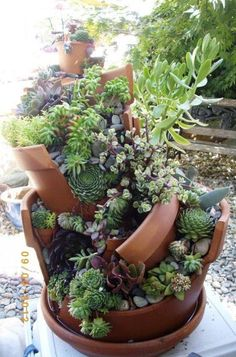 Whimsical DIY Project Transforms Broken Pots into Beautiful Fairy Gardens - My Modern Met - Succulent Gardening Succulent Gardening, Succulent Pots, Cacti And Succulents, Planting Succulents, Container Gardening, Planting Flowers, Succulent Display, Broken Pot Garden, Garden Pots