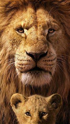 Mufasa & Simba In The Lion King Mufasa & Simba In The Lion King Ultra HD Mobile Wallpaper.You can find The lion k. Lion Hd Wallpaper, Tier Wallpaper, Disney Phone Wallpaper, Animal Wallpaper, Wallpaper Quotes, 4k Wallpaper Iphone, 4k Wallpaper Download, Ultra Hd 4k Wallpaper, Screen Wallpaper