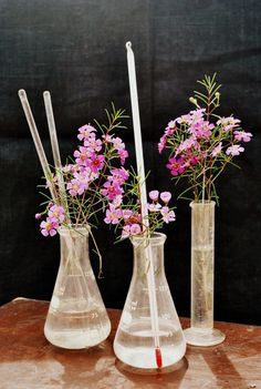 Vintage Chemistry Lab Set Bud Vases by JunkLoveandCo on Etsy