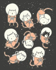 cats in space illustration by drew brockington. Space Cat, Cat Drawing, Drawing Girls, Cute Illustration, Astronaut Illustration, Digital Illustration, Crazy Cats, Cat Art, Cute Cats