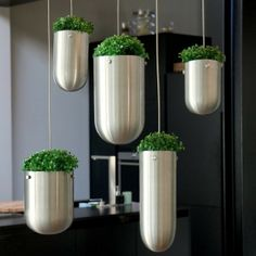 Try these for outside . They are so modern and clean lined , but they would need trailing plants in them.