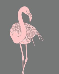 FREEBIES+//+PRETTY+IN+PINK+FLAMINGOS+-+Oh+So+Lovely+Blog