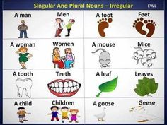 The Most Common Irregular Plural Nouns in English 1