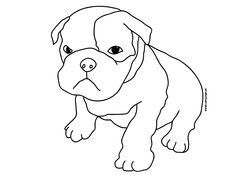 Cute Animal Coloring Pages to Print | Coloring page of a boxer puppy