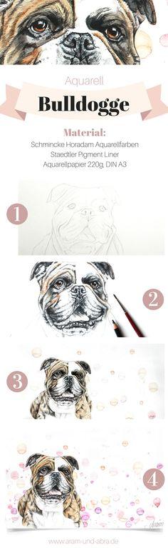 Von der Skizze zum fertigen Bild: Zeichnung Aquarell von Hund Nando (Continental Bulldog). Tierportraits und Illustrationen von Aram und Abra.
