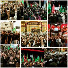 Students Procession in Abal Fadhlil Abbas Holy Shrine   #7thMuharram1437