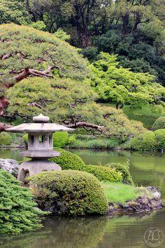 Oravanpesä: JAPANI 2019 osa 35: Sayonara. Shinjuku Gyon-en, Tokyo Shinjuku Gyoen, Hakone, Tokyo Tower, Osaka, Golf Courses, Pergola, River, Mountains, Nature