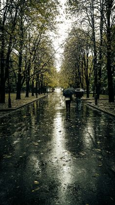 Kharkiv Autumn.