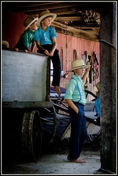 Amish auction this week near Sturgeon Missouri.