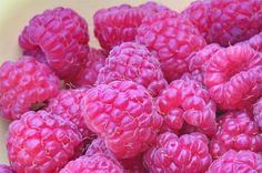raspberries...want them all the time