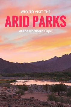 Why to visit the arid parks of the Northern Cape, South Africa - Richtersveld, Augrabies, Kgalagadi or Kalahari, Mokala and Namqualand