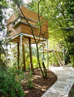 "Treehouse hotels & treehouses for rent - Tree house ""Magnolia"" - Luxury Tree Houses, Cool Tree Houses, Woodland House, Forest House, Tree Forest, Green Architecture, Architecture Details, Ideas Cabaña, Modern Tree House"