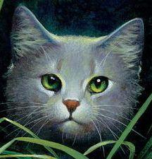 warrior cats ultimate guide | zugehoerigkeit aktuell namen junges schuelerin kriegerin familie ...