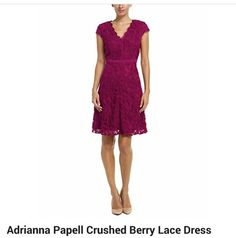 Adriana Papell Lace Dress Fall 2014