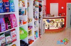 Decoração Pet Shop: Dicas, Fotos e Modelos