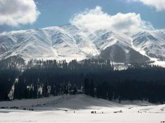 Kashmir The Paradise on Earth: Click here for More details - http://www.travelmasti.com/domestic/jk/index.htm