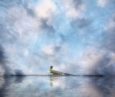 Gliding through the sky ♦ Avironner dans les cieux by Lucie Gagnon on 500px  Photographie : Lucie Gagnon  Copyright : Lucie Gagnon