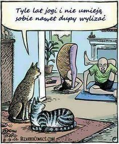 Cats and Yoga. What do humans know about Yoga? Funny Cartoons, Funny Cats, Funny Animals, Funniest Animals, Silly Cats, Yoga Gato, Bizarro Comic, Yoga Humor, Haha