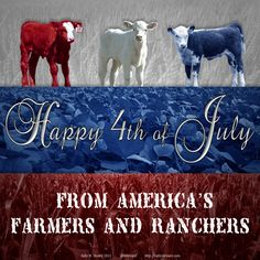 Celebrating American Agriculture for the 4th of July