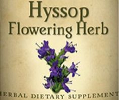 HYSSOP FLOWERING HERB All Natural Herbal Tincture for Healthy Intestines & Respiratory Immune Systems
