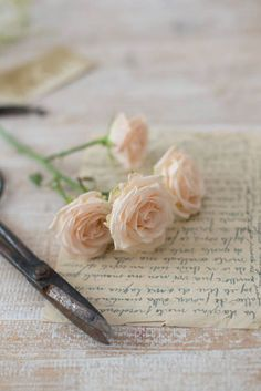 ♕ roses and handwritten letters