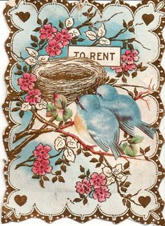 Cute card with bluebirds - empty nest syndrome