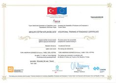 Learning never ends and continues the whole life on. We provide and encourage our staff to join 'Technical Assistance for Increasing Adaptability of Employees in Tourism Sector' and getting this certificate. Attendance Certificate, Encouragement, Join, Learning, Life, Study, Teaching, Studying, Education