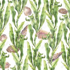 Picture of Watercolor seamless pattern with laminaria and seashells. Hand painted underwater floral illustration with algae leaves branch isolated on white background. For design, fabric or print. stock photo, images and stock photography. Nature Illustration, Floral Illustrations, Baby Shower Invitation Templates, Free Vector Art, Royalty Free Images, Fabric Design, Hand Painted, Watercolor, Pattern