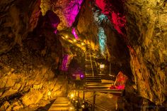 The rather impressive Nippara Limestone Cave on Tokyo's outskirts makes for a great family day out. http://ridgelineimages.com/sightseeing/nippara-limestone-cave-spelunking-in-tokyo/. Pack lunches as hardly any eateries in town. Wear sturdy shoes. Constantly 11 degrees inside