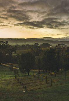 The Barossa Valley, Australia