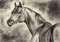 Arabian horse iii by maniaadun on deviantart horse drawings Most Beautiful Animals, Beautiful Horses, Horse Artwork, Horse Paintings, Pastel Paintings, Arabian Beauty, Horse Drawings, Amazing Drawings, Equine Art