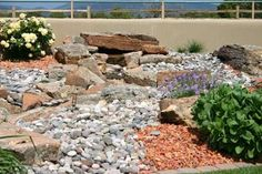 A variety of gravel, stone and boulders add variety and flare to this southwestern yard. New Mexico Homes, Backyard Plan, Water Pond, Landscape Materials, Landscaping Supplies, Desert Homes, Desert Plants, Blooming Plants, Drought Tolerant